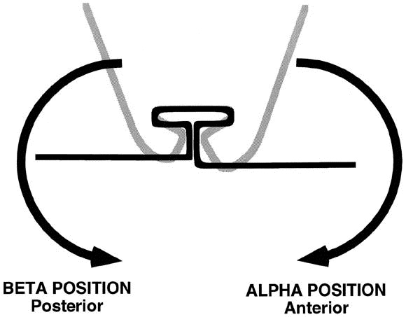 t-loop position and anchorage control